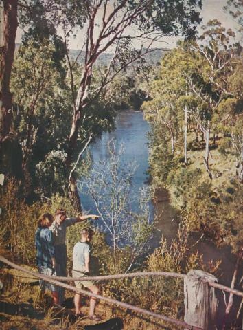 Yarra River, Warrandyte, 1954