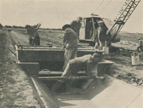 Metropolitan Farm, 1955