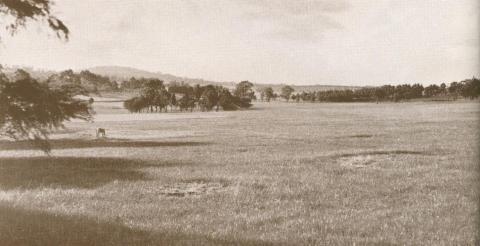 Rosanna Golf Club Course, 1937