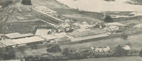 Abattoirs and Meat Exporting Works, Portland, 1960