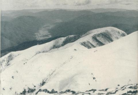 Mount Feathertop, 1951