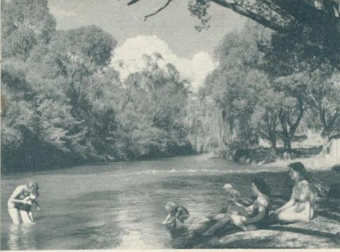 The river swimming pool, Bright, 1951