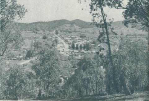 View of Myrtleford, 1951