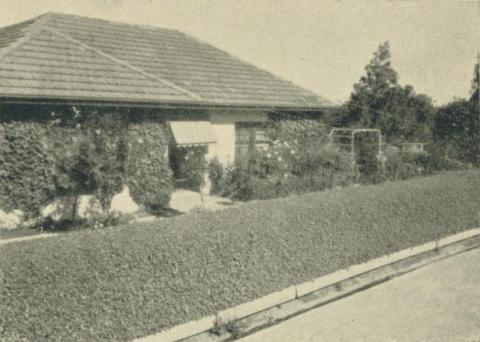 A private garden, Yallourn, 1961