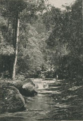 The Artists Glen, Lorne, 1910