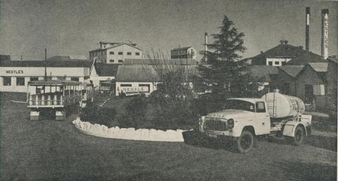 Maffra Co-operative and the Nestle Factory, 1963
