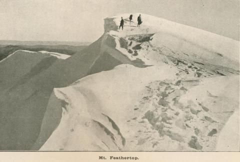 Mount Feathertop, Harrietville, 1919