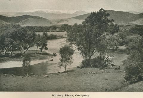 Murray River, Corryong, Upper Murray Shire, 1919