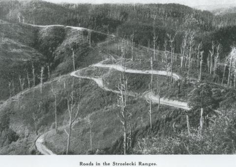 Roads in Strzelecki Ranges, 1946