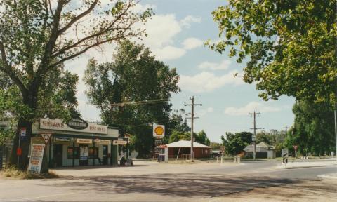Tinamba, 2002