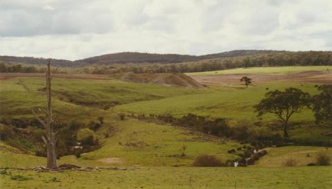 Piggoreet, 2002