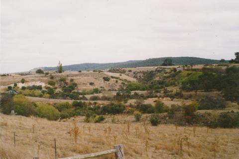 Piggoreet, 2004