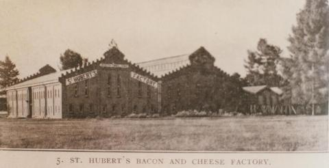 St Hubert's bacon and cheese factory, Coldstream, 1910
