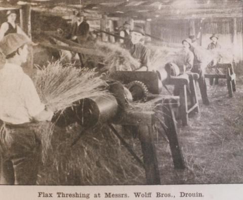 Flax threshing at Wolff Brothers, Drouin, 1919