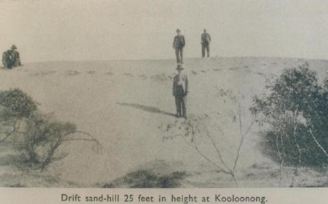 Sandhill at Kooloonong, Swan Hill Shire, 1944