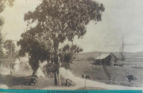 On the Bairnsdale-Lindenow Road, 1943