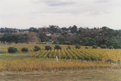Goonawarra vineyard, looking south, Sunbury, 2010