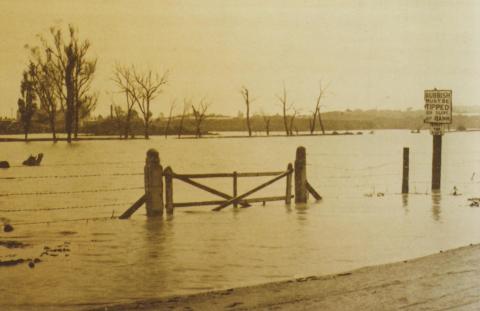 Como Park in South Yarra flooded, October 1923