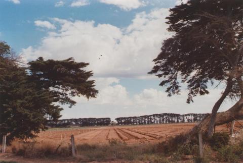 Farm, Werribee South, 2013