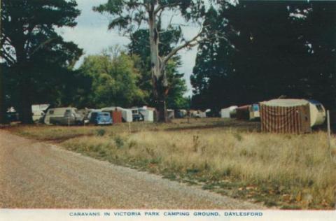 Caravans in Victoria Park Camping Ground, Daylesford, 1957