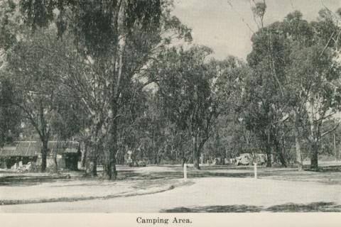 Camping area, Echuca, 1955