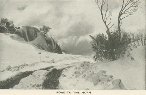 Road to the Horn, Mount Buffalo, 1953