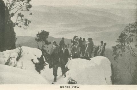 Gorge View, Mount Buffalo, 1953