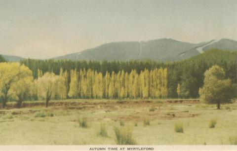 Autumn Time at Myrtleford, 1953