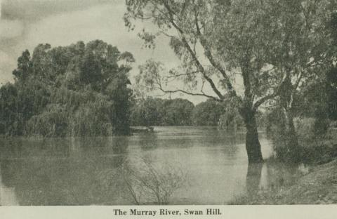 The Murray River, Swan Hill