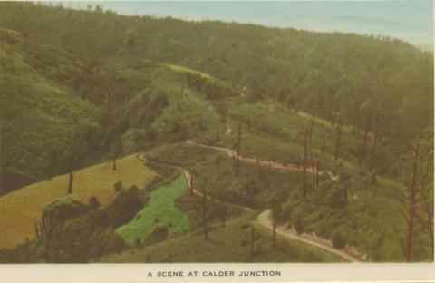 A Scene at Calder Junction