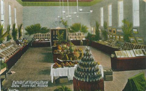 Exhibit at horticultural show, Shire Hall, Mildura