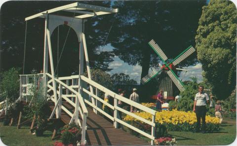 Tesselaar's Tulip Farm in the Dandenongs