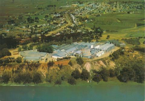 Mildura winery, Merbein, 1986