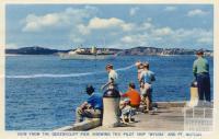 View from the Queenscliff pier, 1964