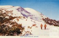 Snow scene near Mount Hotham
