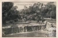 A Castlemaine garden scene, 1915