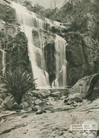 Mackenzie Falls, The Grampians, 1954