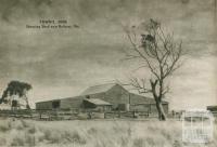 Shearing shed near Ballarat, 1954
