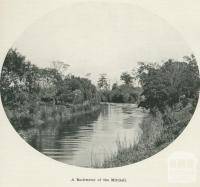 A backwater of the Mitchell River, 1918