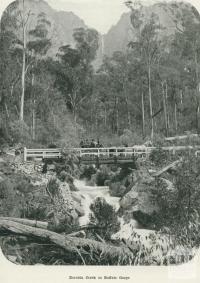 Eurobin Creek in Buffalo Gorge, 1918