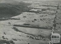Orange Groves, Warby Ranges, Glenrowan, 1960