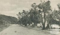 The Beach Road, Dromana