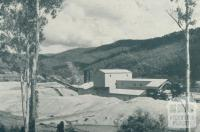 Gold Dredging, Harrietville, 1951