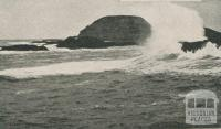 The Nobbies, off Phillip Island, 1910