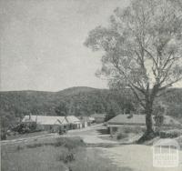 Blackwood, 1959