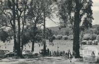 Picnic Ground, Woodend, 1959