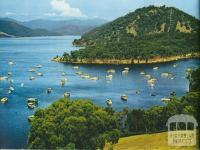 Overlooking the Boating Club Harbour at Eildon Lake, c1958