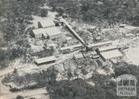 The Wattle Gully Gold Mine, 1961