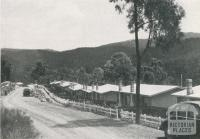 Part of the Upper Yarra Township, 1955
