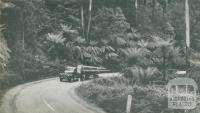 Timber Transport, Dandenongs, c1952